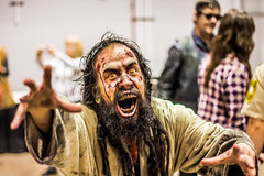 walker stalker con chicago illinois march 14 photo by timp37
