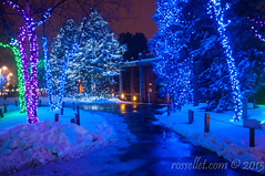 Lights Before Christmas photo by rellet17