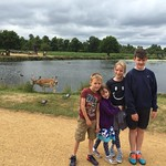 Having a walk round Bushy Park<br/>12 Jul 2015