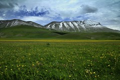 Piana di Castelluccio di Norcia photo by luporosso