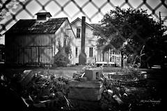 Alone ~ 198.365 photo by JR Vork