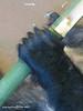 10645832556_7777f4e4aa_t