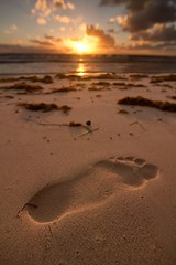Big foot photo by wallzeye
