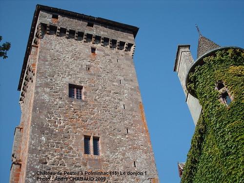 Château de Pesteil à Polminhac (15) Le donjon 1