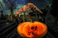 Happy Halloween photo by Swissrock