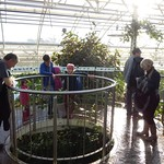 Nice and warm inside the glass house<br/>19 Jan 2014
