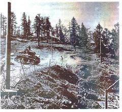 1945- Authion - Cabanes vieilles