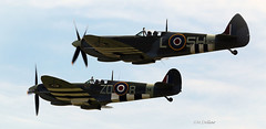 Spitfires photo by maggie230
