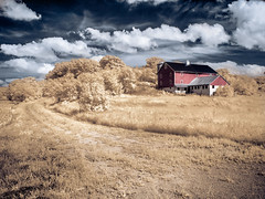 The Red Barn - Infrared Gold photo by Painted Light Studio