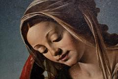 Donna di Venezia - Madonna van Piero di Cosimo photo by hrunge