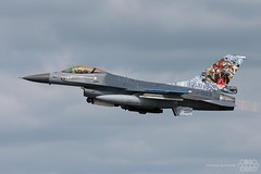 F-16AM 313 Sqn Netherlands Air Force NATO Tiger Meet 2014 Schleswig-Jagel photo by Spotterforlife