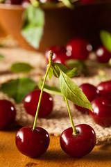 Healthy Organic Sour Cherries photo by brent.hofacker