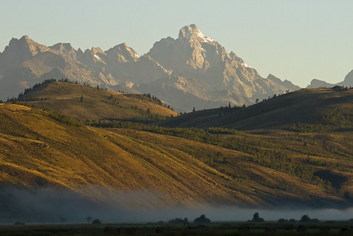 8/28/2014 - This morning in Jackson Hole.