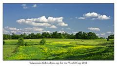 Mundial 2014 photo by lada/photo