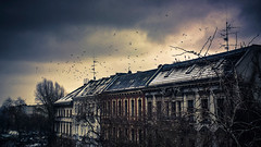 Berlin winter tale photo by PhiGun
