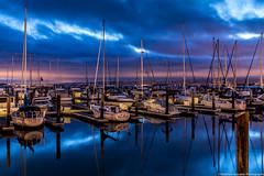 Pier 39 Marina {Explored 1-Sept-2014 #40} photo by Matthew Kowalski