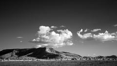 Hunter Valley photo by adams.co.tt