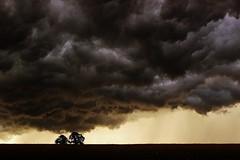 Pre-Storm... photo by Sam Way
