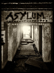 Seeking Asylum photo by Feldore