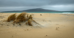Windy Beach photo by Waldemar*