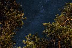 Milky Way photo by HendrikMorkel
