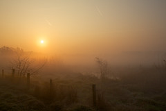 Early morning foggy sunrise photo by generalstussner