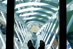 Glass floor photo by tad2106 - Trudie Davidson Photography