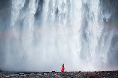 Free Falling photo by Elizabeth Gadd
