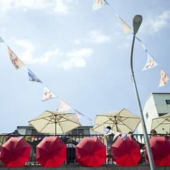 Summer Gingham photo by 藍川芥 aikawake