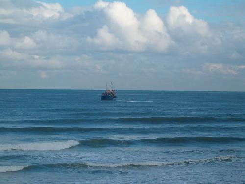 103132677 77c9513798 Las olas de hoy Miércoles, 22 de Febrero de 2006  Marketing Digital Surfing Agencia