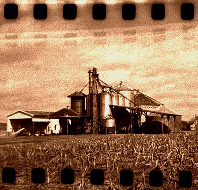 copper farm