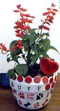 Ruff Flowerpot
