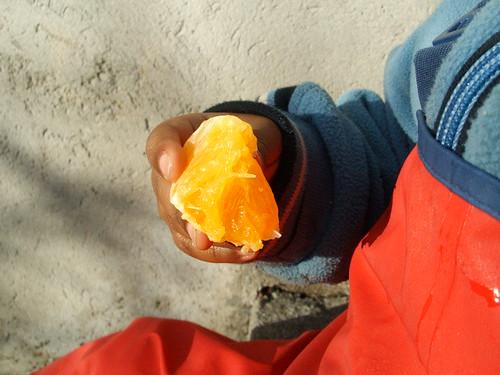 Orange in hand