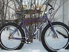 bike_pugs_sidevw
