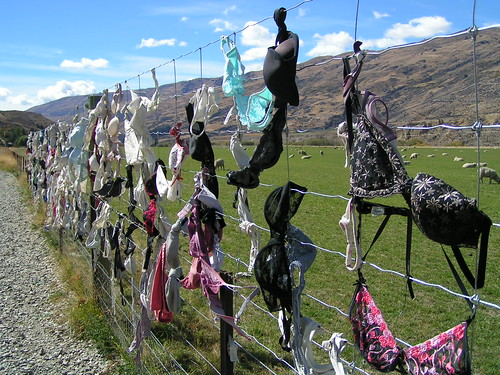 the bra fence