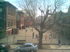 Brown School Playground from the couch (1)