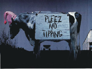 No Cow Tipping