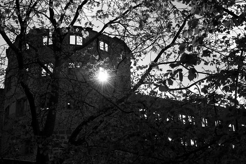 heidelberg schloss (castle)