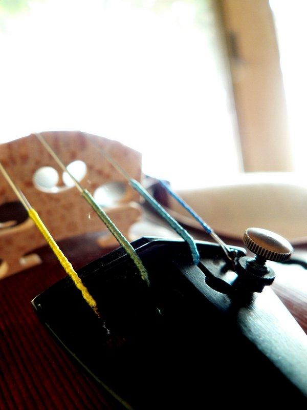 Violin in the Sun