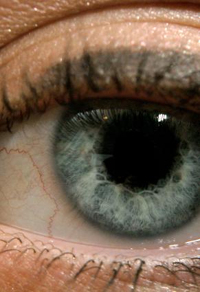 EyeLoRes