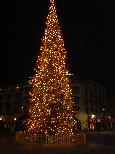 Christmas Tree @ Jack London Square