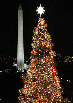 U.S. Capital Christmas Tree
