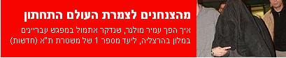 ynet-criminal