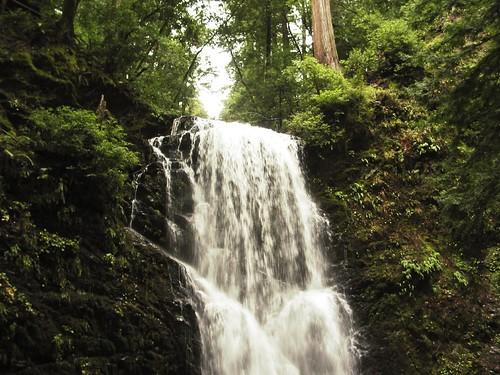 Berry Falls