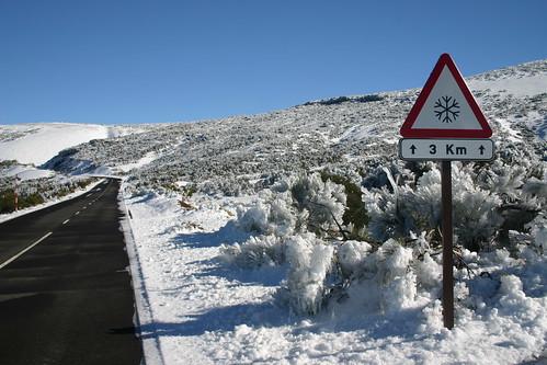 Snowbound. Sure thing! Parque Nacional del Teide