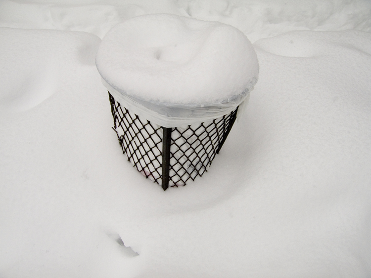 trashcan in snow