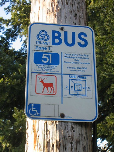 Bus Stop/Deer Crossing