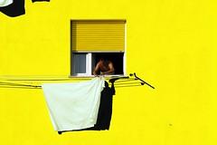 Giorno di bucato photo by meghimeg