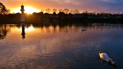 Roath Park at Sunset photo by Paula J James