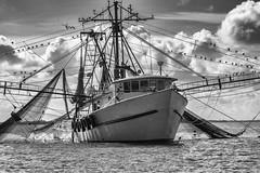 Fishing boat off Tybee Island, Ga. USA photo by Marianne Venegoni